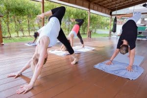 Yoga Sessions at The LifeCo Phuket
