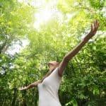 Güneşli Orman