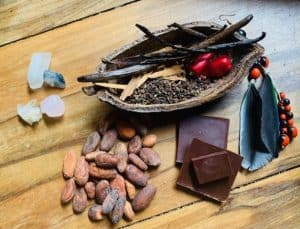 cacao_retreat_ceremony