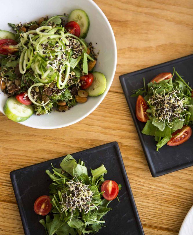 Raw Food Menus and healthy nutrition programs